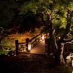 金沢城公園・玉泉院丸庭園ライトアップ